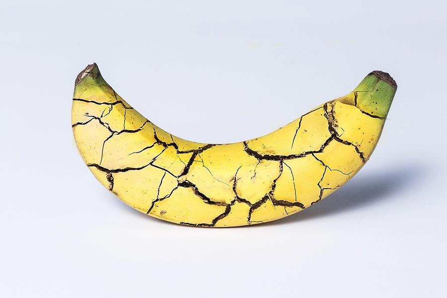 shattered-banana