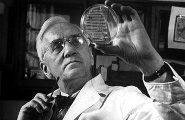 Теперь ты знаешь, что 13 сентября 1929 года Александр Флеминг впервые явил публике пенициллин.