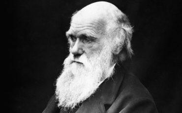 Теперь ты знаешь что 24 ноября 1859 года в продаже появился труд Чарльза Дарвина «Происхождение видов».