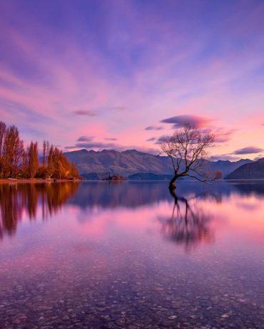 Фотопутешествие в Новую Зеландию