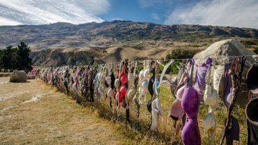 Необычные заборы Новой Зеландии