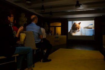 Звезды Российского Кино Выбрали Победителя Конкурса Короткометражных Фильмов «Место Под Солнцем»