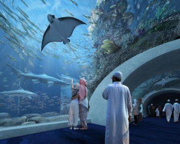 В Омане открылся крупнейший на Ближнем Востоке аквариум