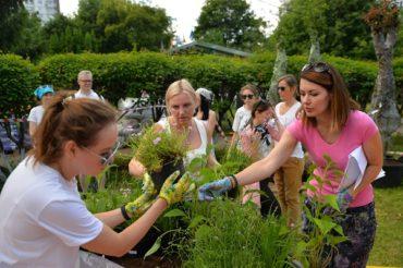 Добрые сады в подарок городу: на фестивале «Цветочный Джем» вырастут 42 сада