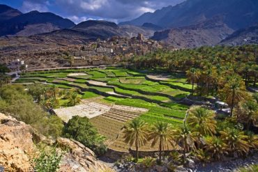 Султанат Оман представлен в номинации «Открытие года»