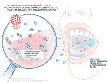 Эффективность формулы ополаскивателя для полости рта «Лесной бальзам»