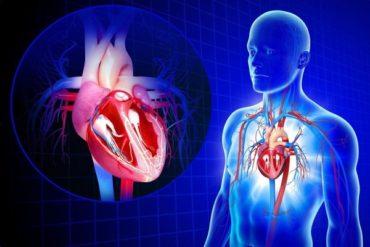 Как Covid-19 влияет на людей с заболеваниями сердца