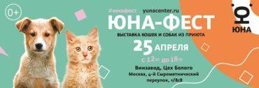 Центр «Юна» и Purina проведут на «Винзаводе» выставку-пристройство собак и кошек из приютов