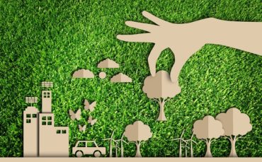 Вселяет уверенность: почему экологичный подход набирает популярность