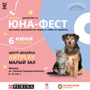 Центр «Юна» и Purina проведут в Artplay выставку-пристройство собак и кошек из приютов