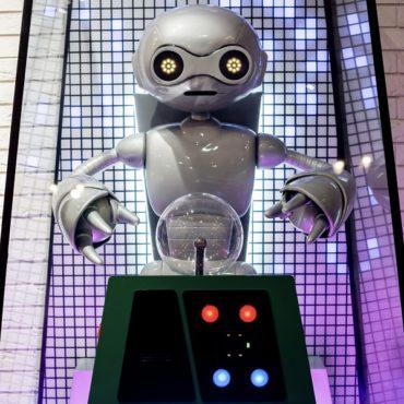 Робот-предсказатель появился на «Острове Мечты»
