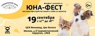 Первые осенние ВЫБОРЫ! 19 сентября Центр реабилитации временно бездомных животных «Юна» объявляет выборы пушистого питомца в ваш дом