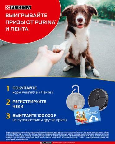 Purina и «Лента» запускают социальную акцию «Делитесь добром!», призванную помочь животным из приютов