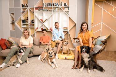 Подкаст, который меняет жизнь: PEDIGREE®️ и Настя Задорожная представили новый сезон подкаста «Пойдём домой»