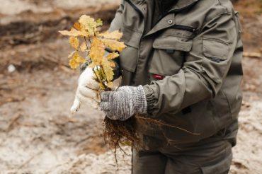 «Здоровые дети помогают планете»: «Нестле» высадила более 8 тысяч деревьев по итогам школьного конкурса