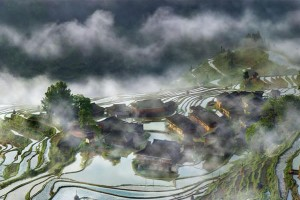 Terraces Village In The Mist